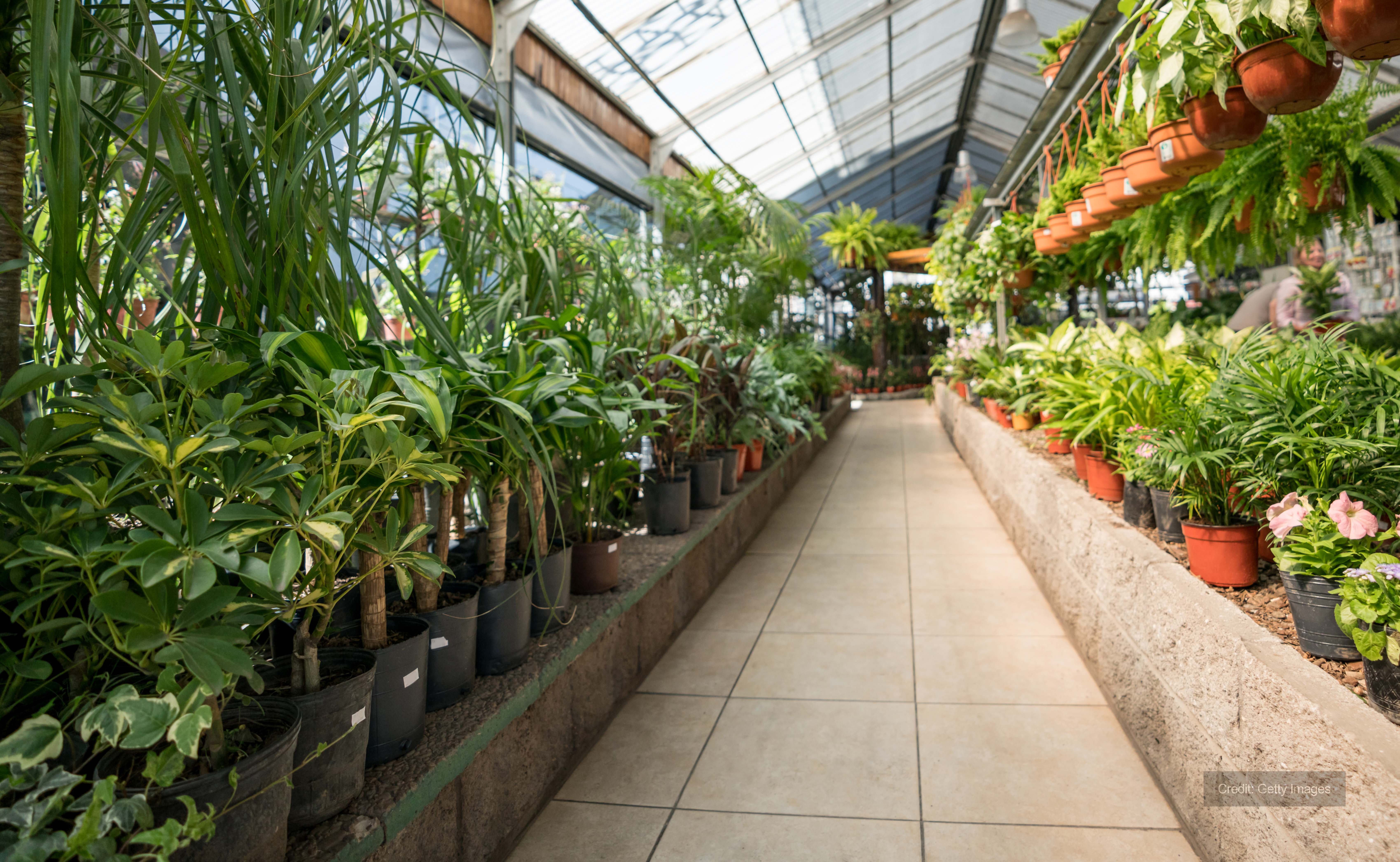 Heating required for garden centre in Kent
