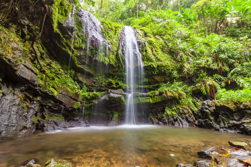 Sykes Pump Hire recreates African waterfall